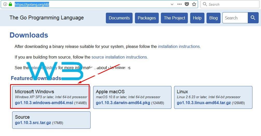 Go Language Installation Windows 1