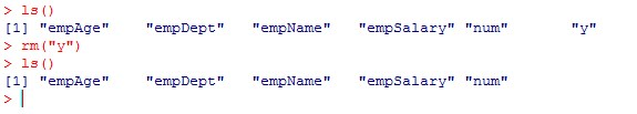 r_delete_variable